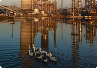 Oil & Gas 19