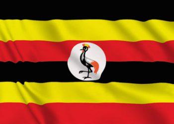 gibb-uganda-project